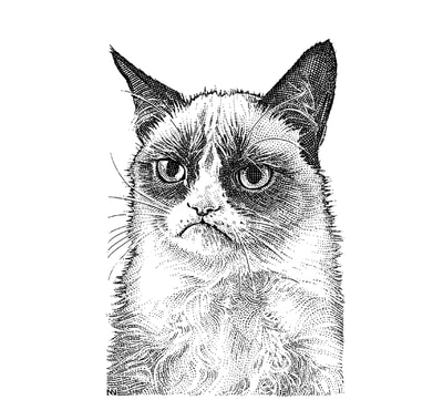 Hedcut illustrations of grumpy cat by visual artist Noli Novak for Wall Street Journal A-Hed.